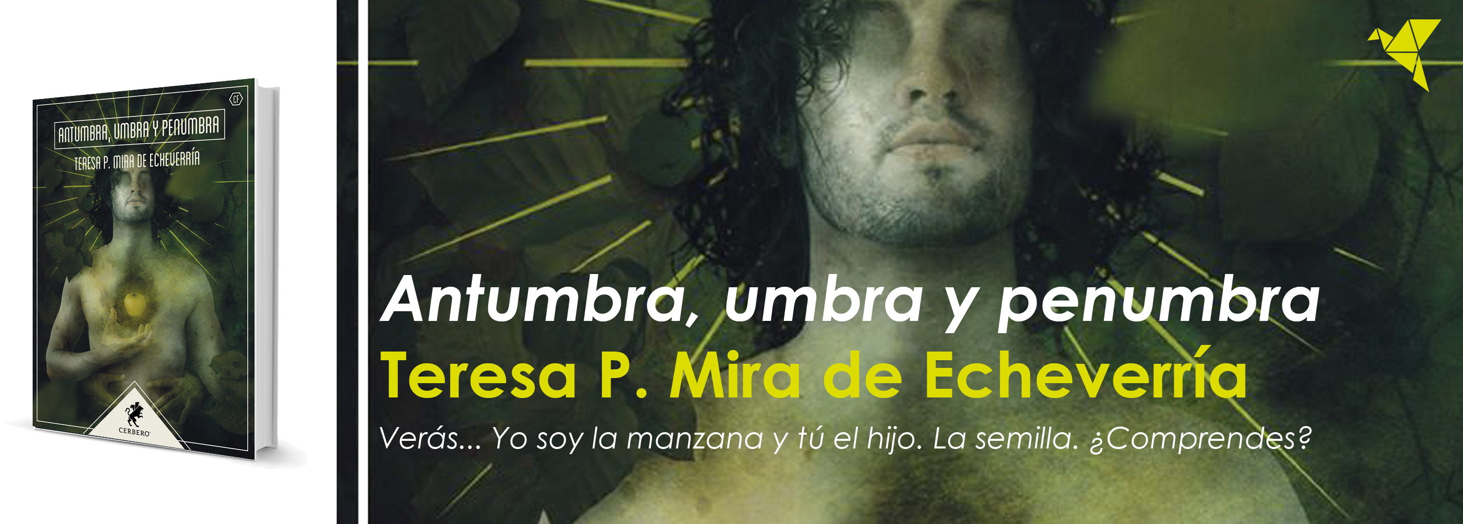 Antumbra, umbra y penumbra, de Teresa P. Mira de Echeverría