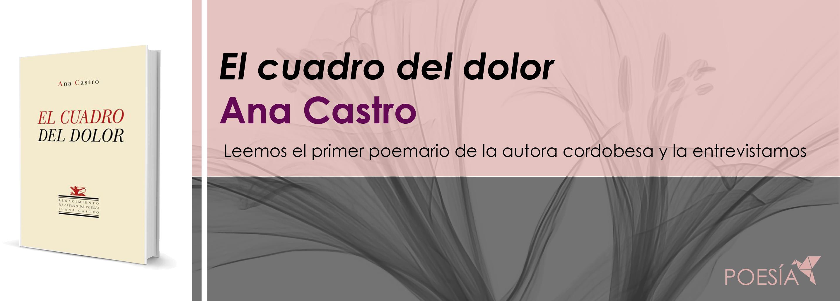 Leemos El cuadro el dolor con Ana Castro